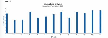 Diagnose Berlin VO2max Trainingsplan Beginner