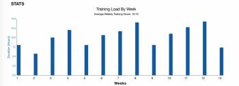 Diagnose Berlin VO2max Trainingsplan Fortgeschrittene